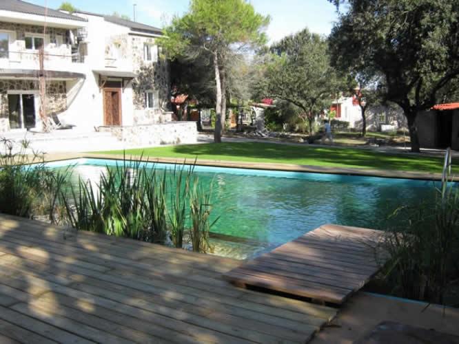 dise o piscinas naturales piscinas quarta natura