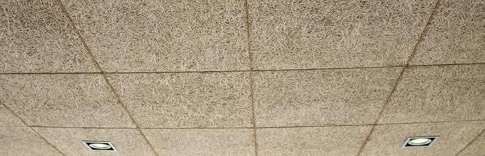 Techos Decorativos Aislamientos Belmonte E Hijos Sl